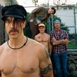 Thumb_red_hot_chili_peppers2.jpg