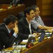 Thumb_diputados_buzarquis.png