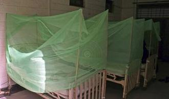 Featured_chikungunya_efe_hospital.jpg