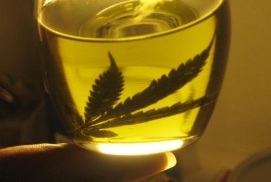 original_aceite_cannabis.jpg.jpg