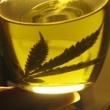 Thumb_aceite_cannabis.jpg
