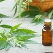 Thumb_cannabis.jpg