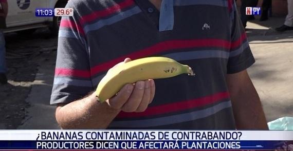 Sponsored_banana.jpg