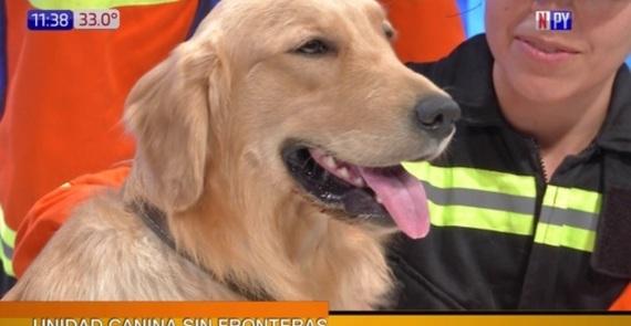 Sponsored_canino.jpg