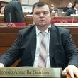 Thumb_dionisio_amarilla_senador.jpeg