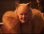 Showtime_cats.jpg