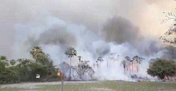 Sponsored_incendio_pantanal.jpg