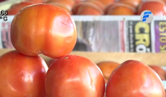 Featured_tomates.png