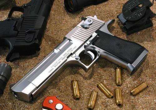 Inician campa a para regularizar la tenencia de armas de for Interior y policia porte y tenencia