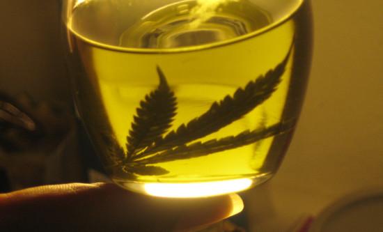 Primer paso hacia el cannabis medicinal legal
